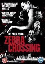 zebra_crossing movie cover