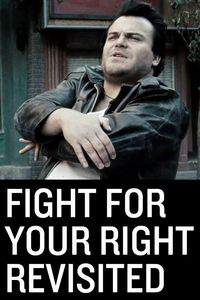 Fight for Your Right Revisited main cover
