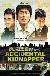 Accidental Kidnapper main cover