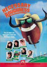 necessary_roughness movie cover