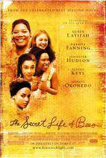 the_secret_life_of_bees movie cover
