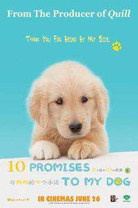 10 Promises to My Dog main cover