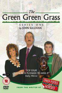 The Green Green Grass movie cover