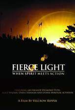 fierce_light_when_spirit_meets_action movie cover