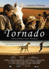 tornado_and_the_kalahari_horse_whisperer movie cover