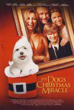 my_dog_s_christmas_miracle movie cover