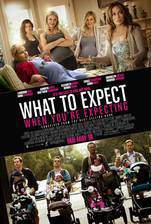 what_to_expect_when_you_re_expecting_2012 movie cover