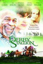 the_derby_stallion movie cover