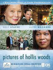 pictures_of_hollis_woods movie cover