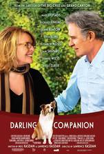 darling_companion movie cover