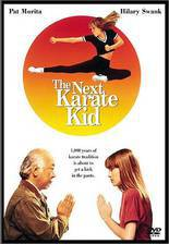 the_next_karate_kid movie cover