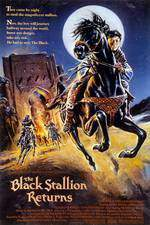 the_black_stallion_returns movie cover