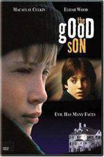 the_good_son movie cover