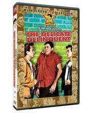 the_delicate_delinquent movie cover