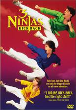 3_ninjas_kick_back movie cover
