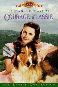 Courage of Lassie main cover