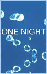 one_night_70 movie cover