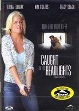 caught_in_the_headlights movie cover