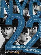 nyc_22 movie cover