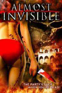 Almost Invisible main cover
