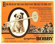 Greyfriars Bobby: The True Story of a Dog movie photo