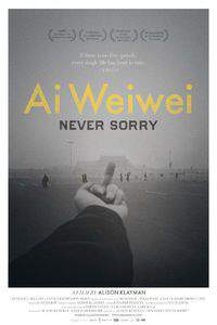 Ai Weiwei: Never Sorry main cover