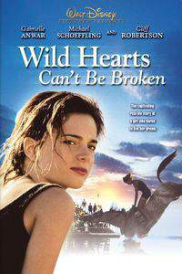 Wild Hearts Can't Be Broken main cover