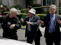 Major Crimes photos