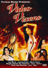 Video Vixens movie cover