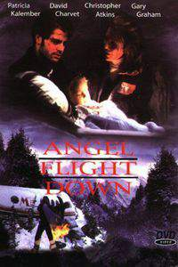 Angel Flight Down main cover