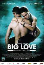 big_love_2012 movie cover