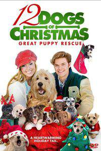 12 Dogs of Christmas: Great Puppy Rescue main cover