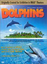 dolphins movie cover