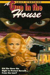 A Gun in the House main cover