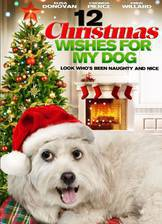 12_wishes_of_christmas movie cover