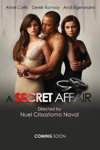 A Secret Affair main cover