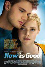 now_is_good movie cover