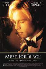 meet_joe_black movie cover