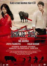 sonja_and_the_bull movie cover