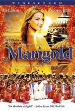 marigold movie cover