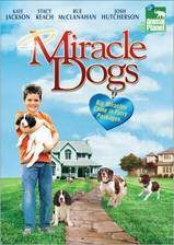 miracle_dogs movie cover