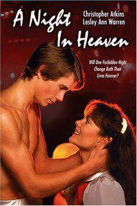 A Night in Heaven main cover
