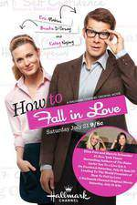 how_to_fall_in_love_2012 movie cover