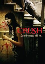 crush_2013 movie cover