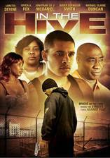 in_the_hive movie cover