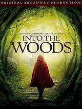 into_the_woods movie cover