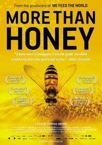 More Than Honey main cover