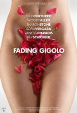 fading_gigolo movie cover