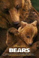 bears_2014 movie cover