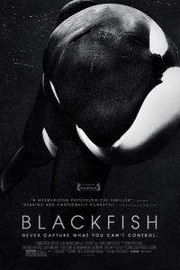 Blackfish main cover